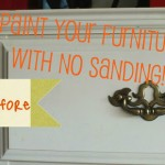 Paint Your Furniture with NO Sanding!