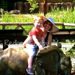 Mommy & Me Monday: Riverbanks Zoo