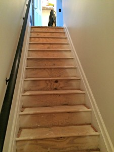 I wish I had known the stairs had such good woodwork... I wouldn't have ordered carpet!