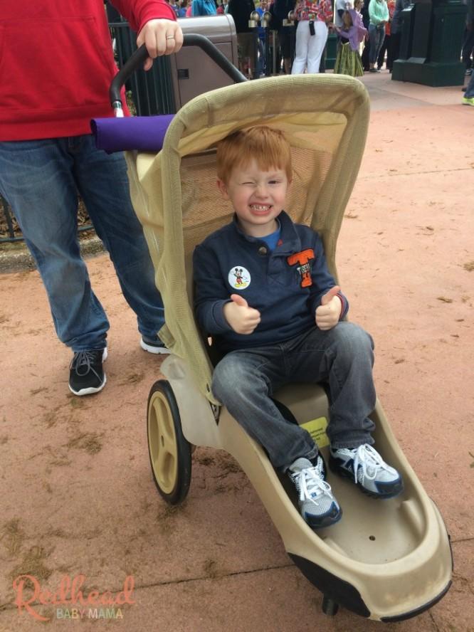 Stroller Rental Walt Disney World