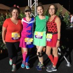 2016 Princess Half Running Costume: Make it Pink/Blue!