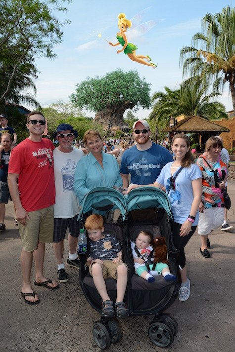 animal-kingdom-family-magic