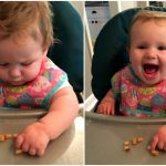 Baby vs. Real Food: Try, Try Again