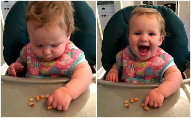 moving beyond the basics; eating solid foods