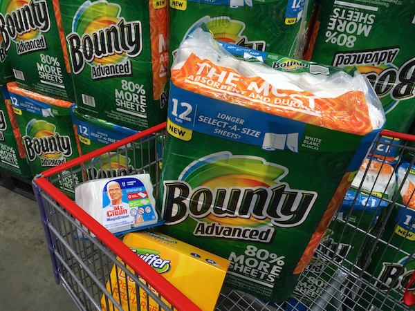 Stocking up for Chores and Spring CLeaning