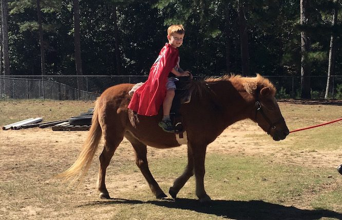 Riding Ponies at the Family Farm