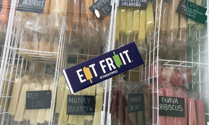 St. Augustine  Hyppo Popsicles | Stops for a Family Itinerary in Historic St. Augustine