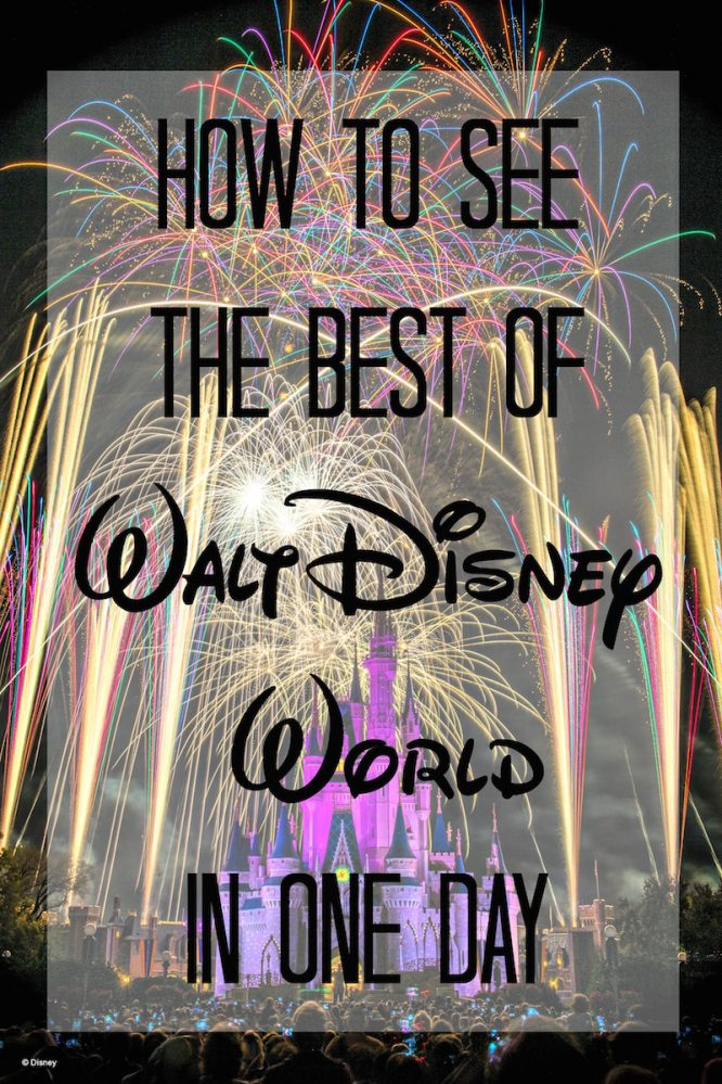 If you only have ONE day at the parks... this is how to spend it. You'll see the BEST rides in the parks with ZERO wait time!