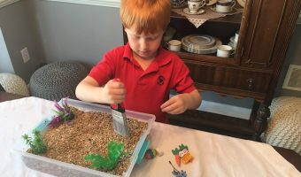 Tumble Leaf Inspired Craft: Sensory Spring Discovery Bin