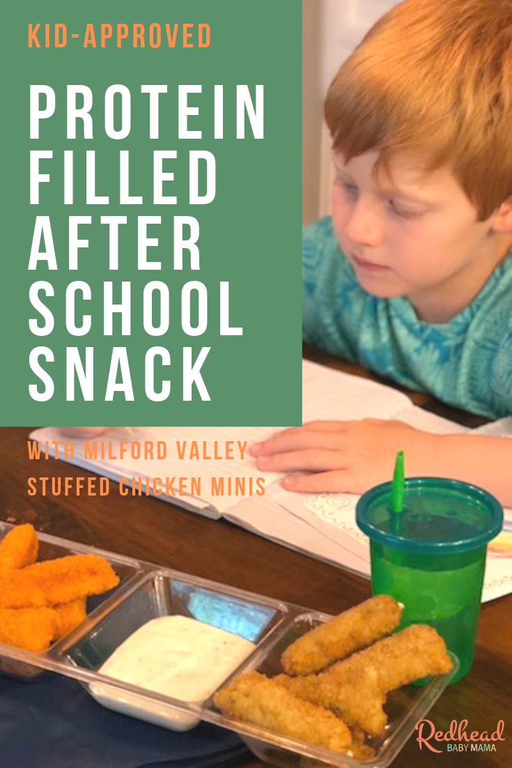 Protein filled After School Snacks