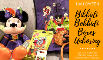 Bibbidi Bobbidi Boxes Halloween Subscription Unboxing
