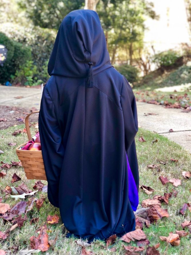 Snow White Old Hag Costume