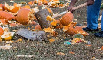 Smash your pumpkins in November
