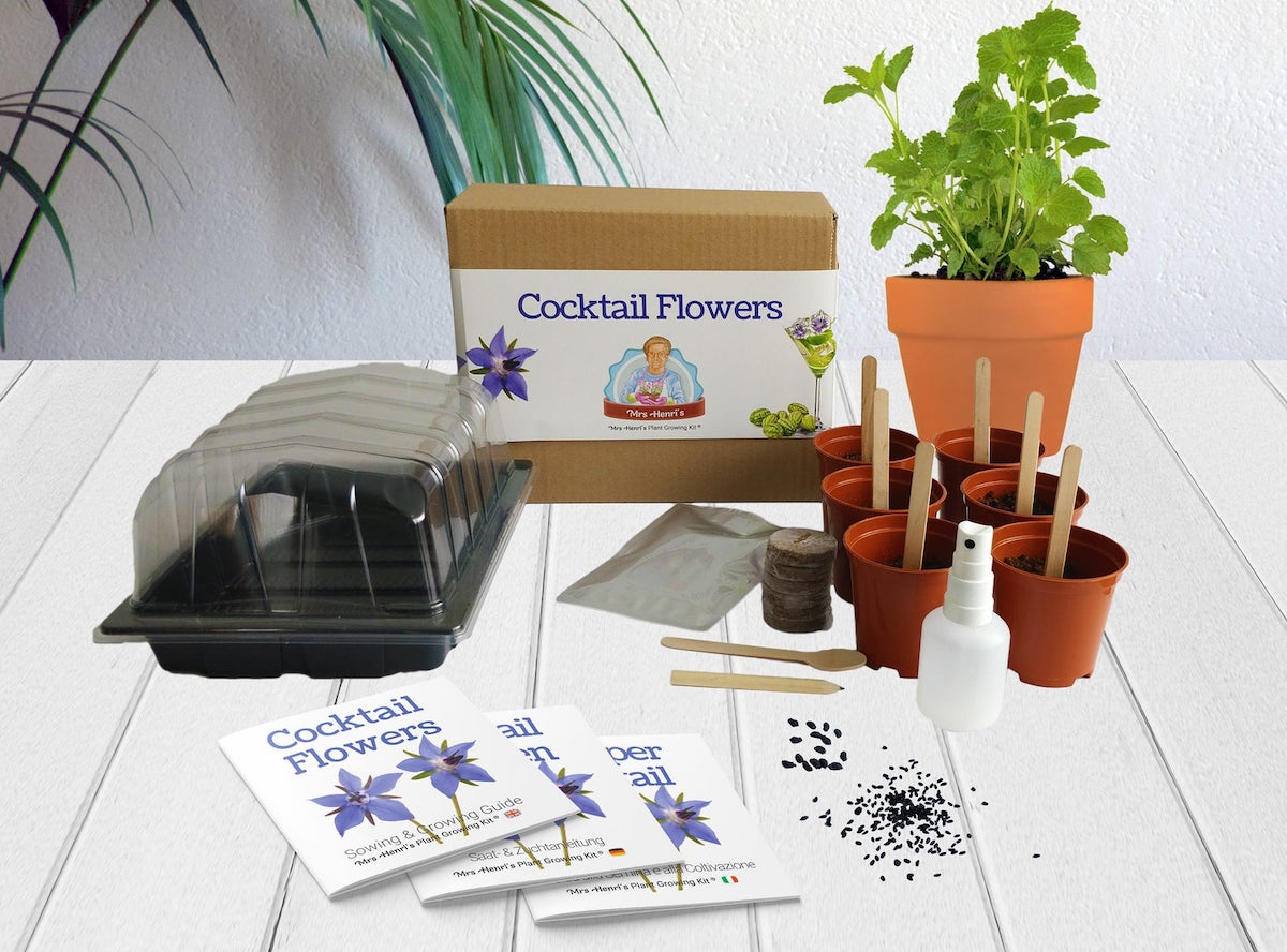 grow your own cocktail flowers kit with seeds and mini pots