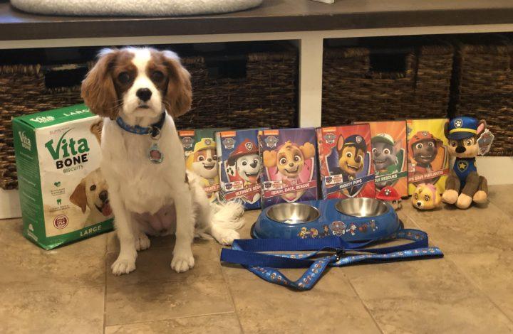 paw patrol giveaway